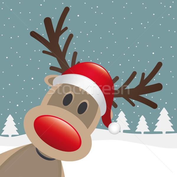 reindeer red nose santa claus hat Stock photo © dariusl