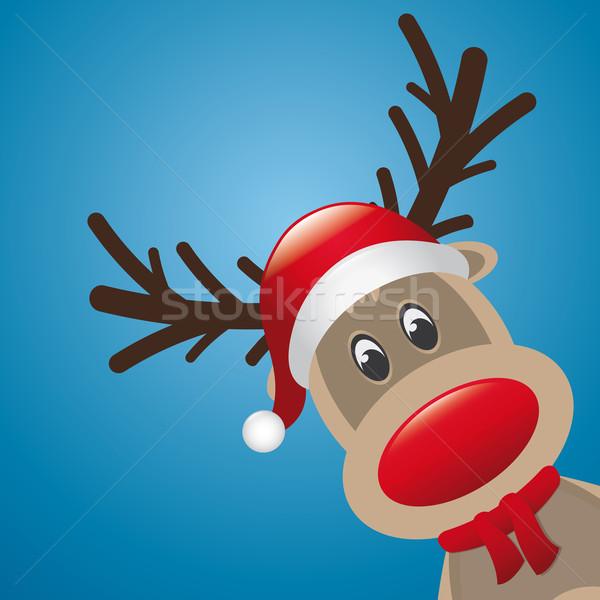 reindeer red nose Stock photo © dariusl