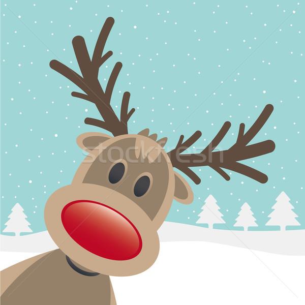 rudolph red nose look Stock photo © dariusl