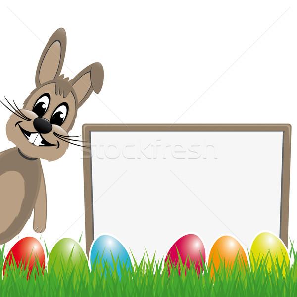 Easter bunny arkasında renkli yumurta Paskalya çim Stok fotoğraf © dariusl