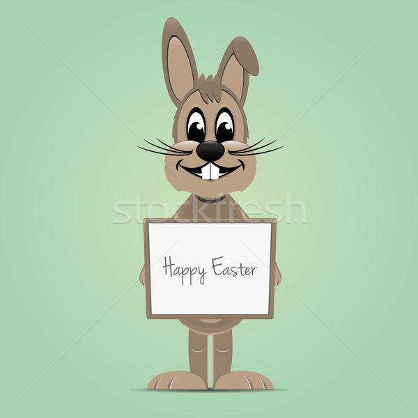 Easter bunny kahverengi bahar tavşan arka plan Stok fotoğraf © dariusl