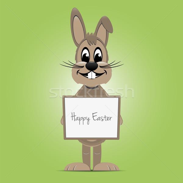 Easter bunny bahar tavşan arka plan tavşan Stok fotoğraf © dariusl
