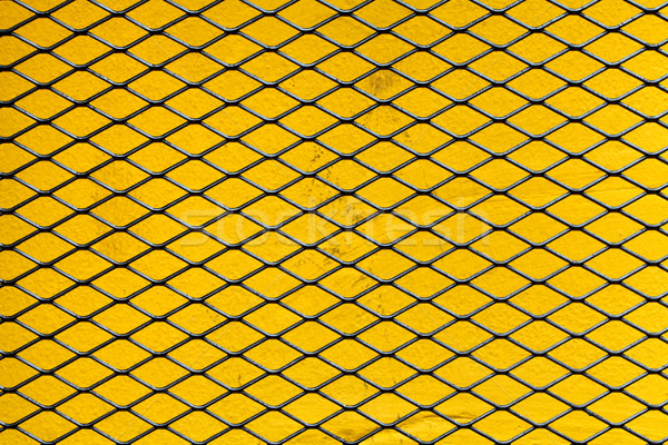 iron net Stock photo © darkkong