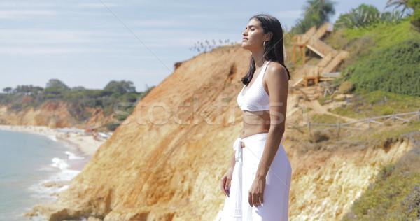 Modelo branco paisagem maravilhoso caber Foto stock © dash