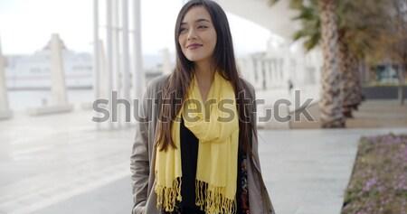 Stijlvol vrouw stedelijke voetganger mall aantrekkelijk Stockfoto © dash