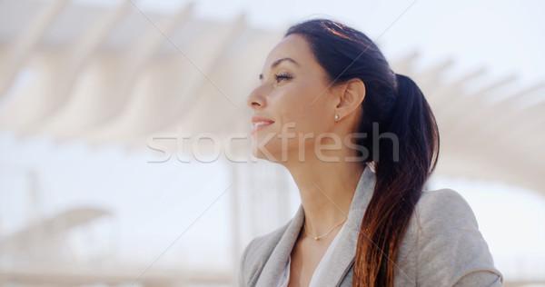 Portret przepiękny wyrafinowany kobieta głowie Zdjęcia stock © dash