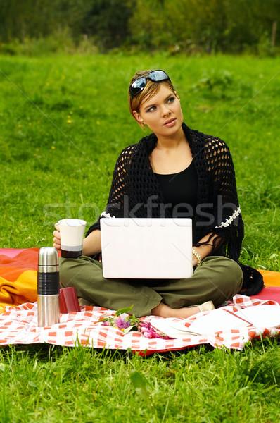 Drukke picknick jonge zakenvrouw werken laptop computer Stockfoto © dash