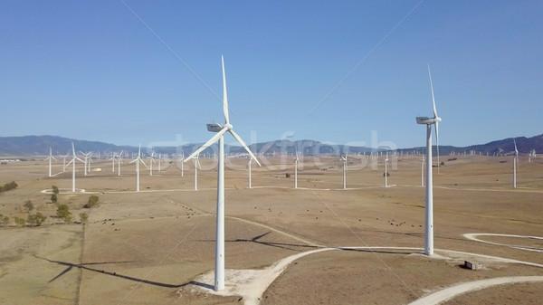 Windmills in desert Stock photo © dash