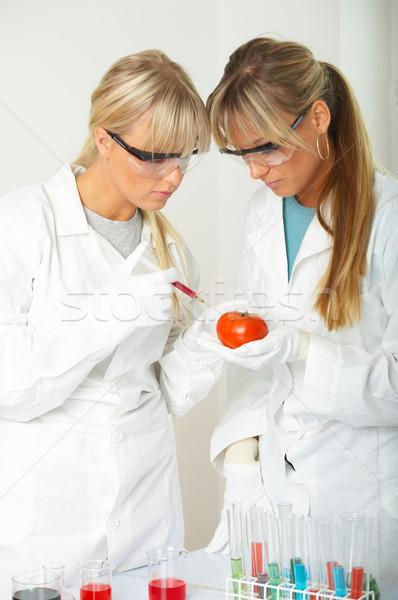 Vrouwelijke lab wetenschappers vloeibare vrouwen bril Stockfoto © dash