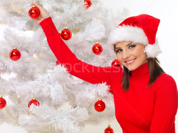 Christmas Beauty Stock photo © dash
