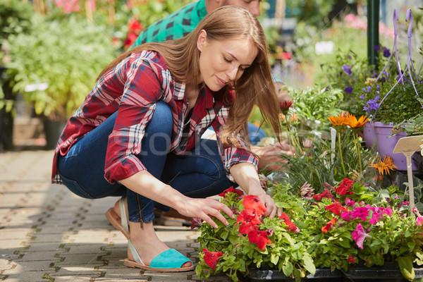 Doua lucru plante vedere laterala om femeie Imagine de stoc © dash