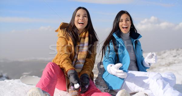 Dwa przepiękny śmiechem młoda kobieta śniegu Zdjęcia stock © dash