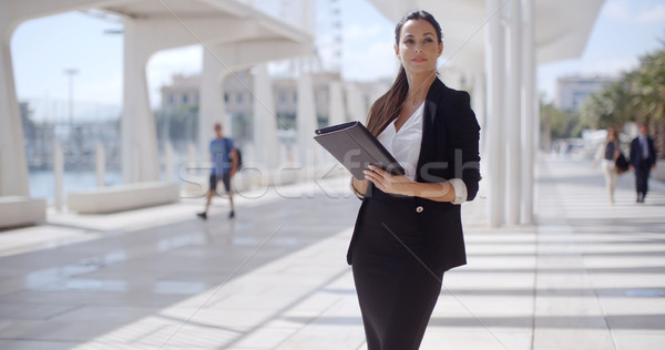 Elegant businesswoman on a seafront promenade Stock photo © dash