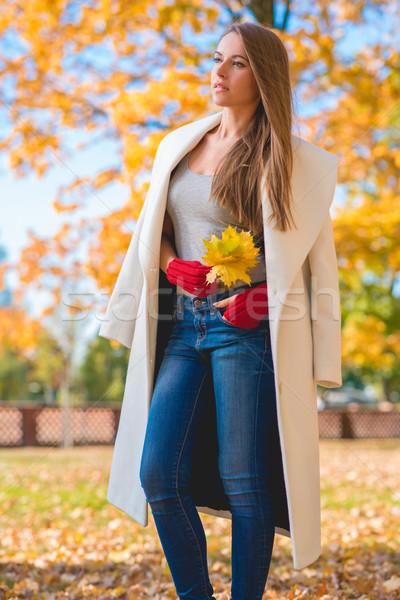 Stylish woman in autumn fashion Stock photo © dash