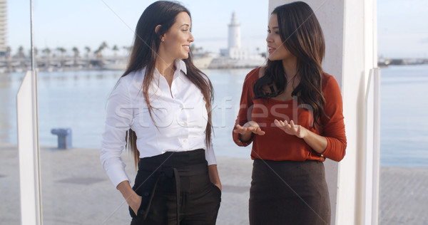Two chic young women standing chatting Stock photo © dash