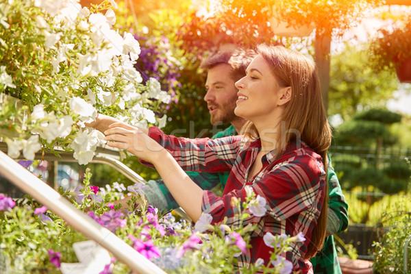 профессиональных растений вид сбоку мужчины женщины Сток-фото © dash