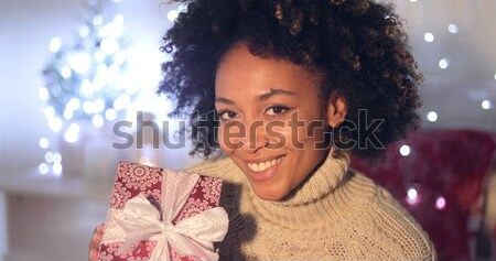 Attractive woman in a red Santa cape with hood Stock photo © dash