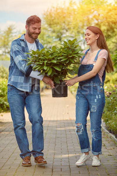 Cheerful gardeners carrying potted plant Stock photo © dash