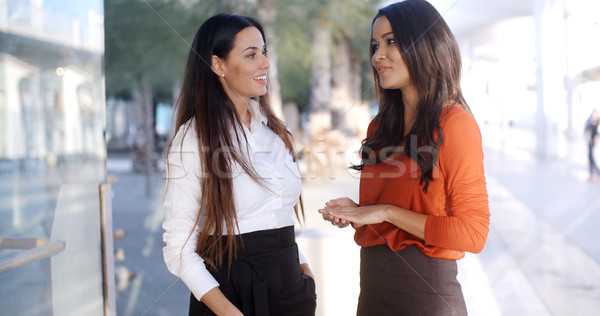 Two natural young woman standing talking Stock photo © dash