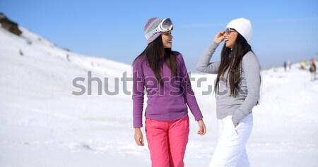 Deux amis randonnée up souriant Photo stock © dash