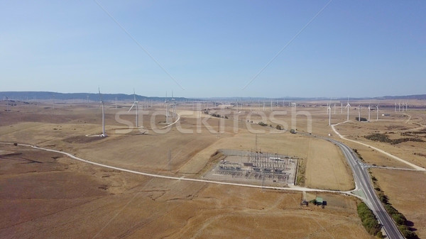 Aerial view of plantations in desert Stock photo © dash