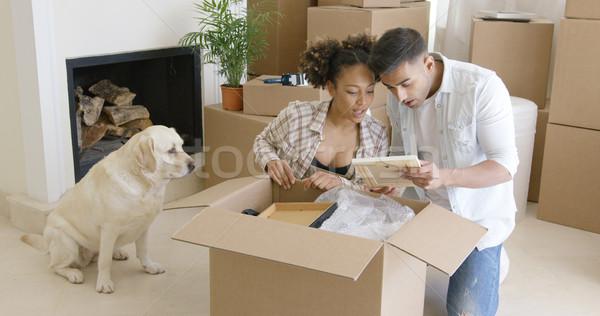 Golden retriever izlerken sahipleri paketlemek yukarı karton Stok fotoğraf © dash