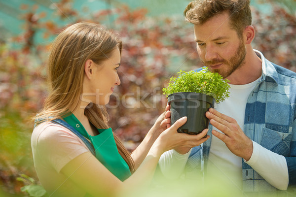 Man smelling potted plant Stock photo © dash