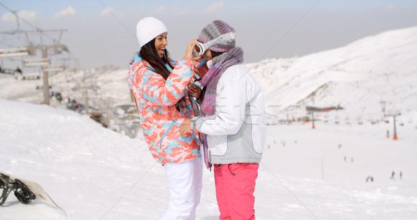 друзей лыжах сноуборд горные Сток-фото © dash