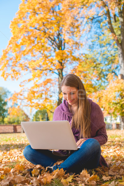Pretty woman working outdoors in an autumn park Stock photo © dash