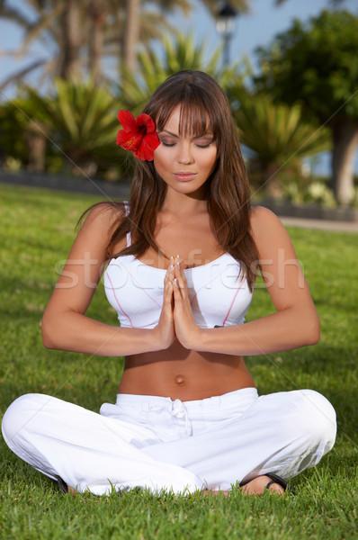 Yoga zaman yıl egzotik kız Stok fotoğraf © dash
