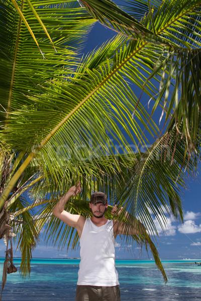 Man Standing Beneath Palm Tree on Tropical Beach Stock photo © dash