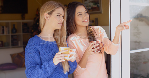 Two young woman enjoying refreshments Stock photo © dash