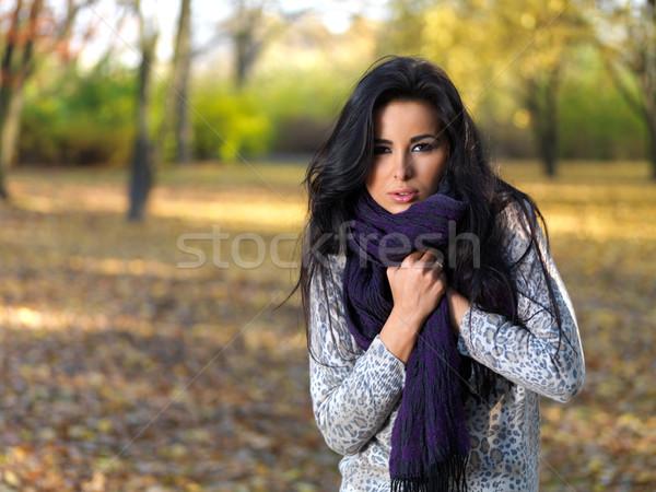 Schoonheid najaar mooie vrouw tijd park Stockfoto © dash