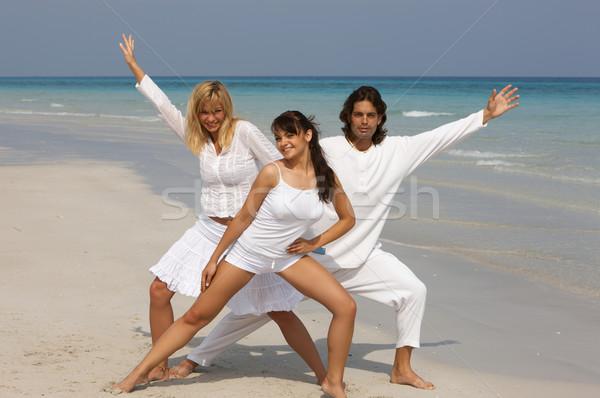 Friends at the Beach Stock photo © dash