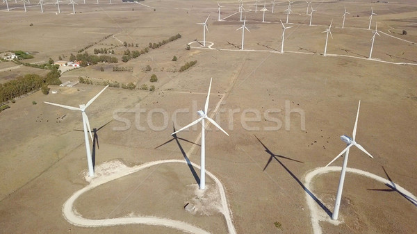 Windmills producing electricity in desert Stock photo © dash