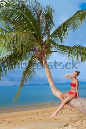 Kadın kadın iç çamaşırı güzel seksi kadın Maldivler su Stok fotoğraf © dash