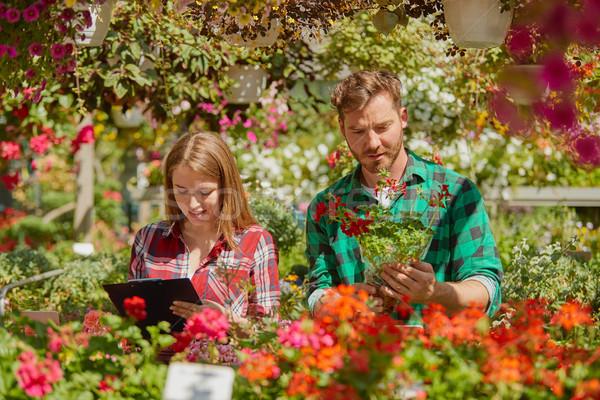 Papírmunka férfi kertész áll virág női Stock fotó © dash