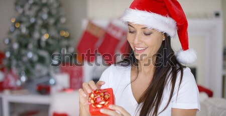 Gorgeous blond young woman lying on couch at Christmas Stock photo © dash