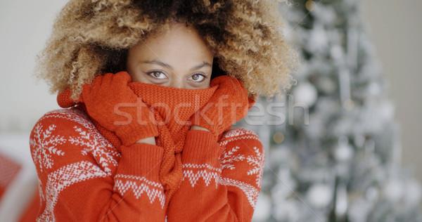 Fashionable young woman at Christmas Stock photo © dash