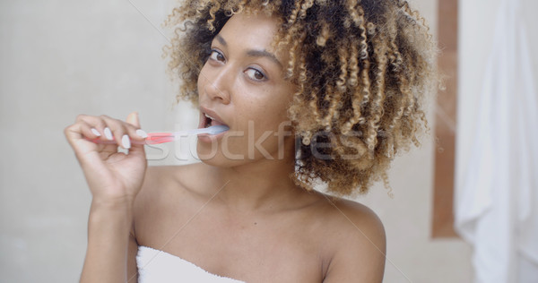 Teeth Cleaning At Home Stock photo © dash