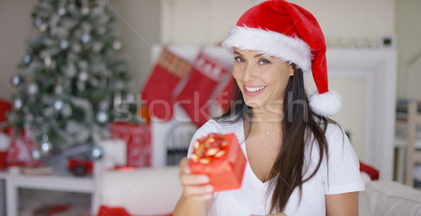 Charismatische jonge vrouw christmas geschenk aantrekkelijk Stockfoto © dash