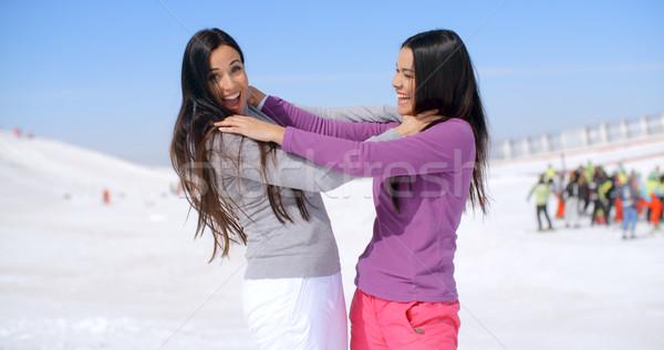 Grapje vrouwen ander paar vrouwelijke vrienden Stockfoto © dash