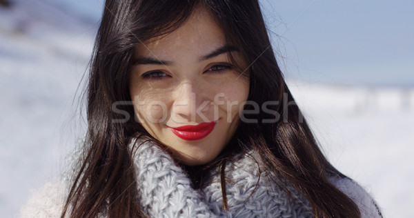 Beautiful young woman in snowy landscape Stock photo © dash
