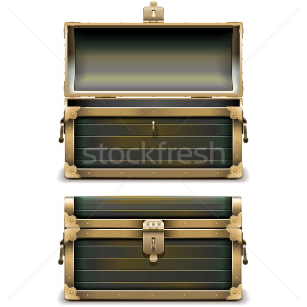 Vector Old Chest Stock photo © dashadima