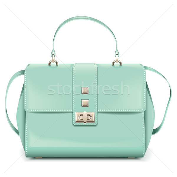 Vector Fashion Woman Handbag Stock photo © dashadima