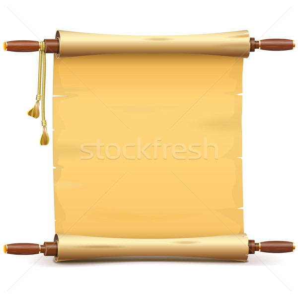 Vector Paper Scroll Stock photo © dashadima