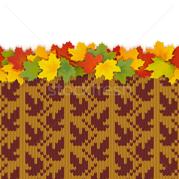 Vector Maple Leaves with Autumn Knitted Pattern 1 Stock photo © dashadima