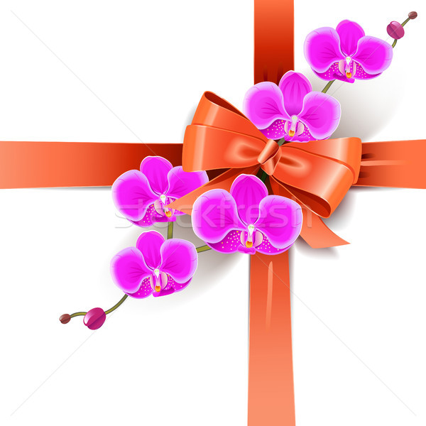 Vector Decorative Bow with Orchids Stock photo © dashadima