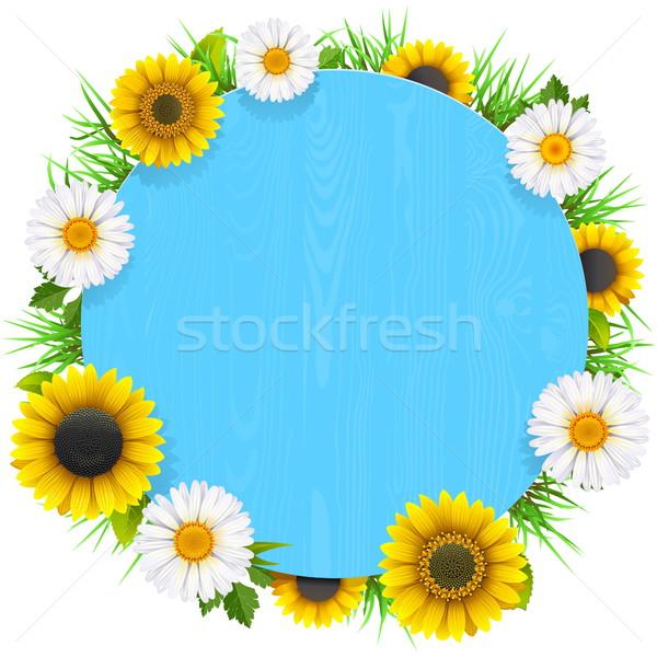 Foto stock: Vetor · azul · moldura · de · madeira · flores · isolado · branco