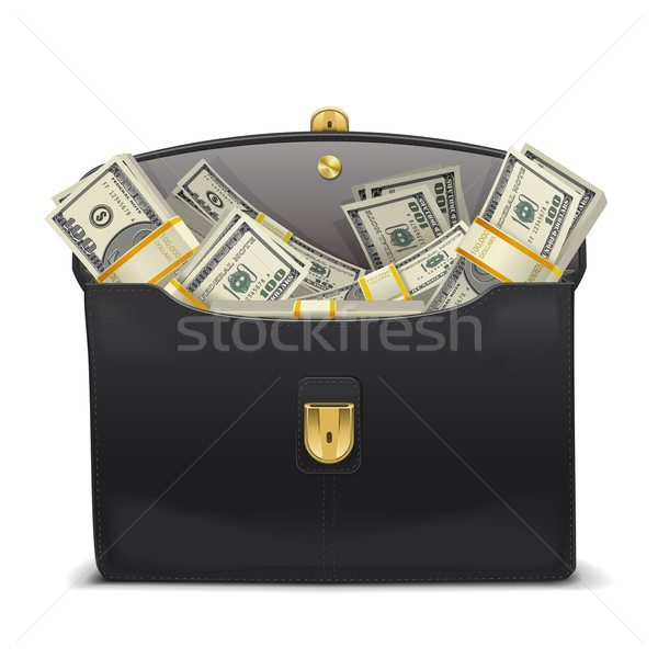 Vettore caso soldi isolato bianco business Foto d'archivio © dashadima